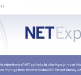 Global NET Survey