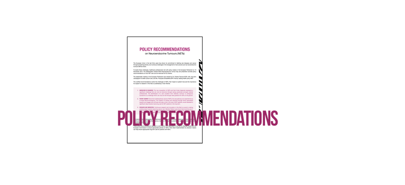Policy recommendations NETs