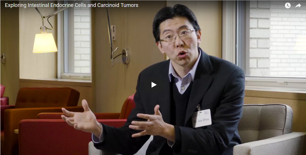 NETRF-funded researchers exploring the birth of a carcinoid cancer cell
