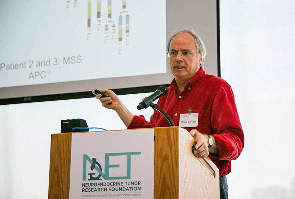 NET Research Foundation Supports a Project for Understanding and Treating NETs: In the Form of Laboratory Mini-Organs