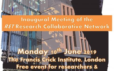 AMEND to Support a New RET Research Collaborative Network
