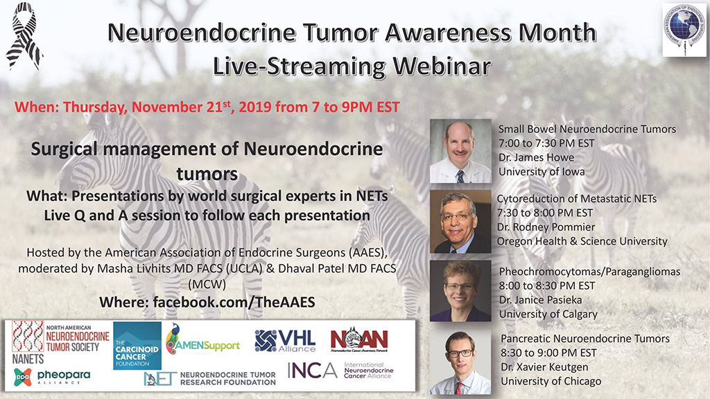 The American Association of Endocrine Surgeons Organizes Webinar on Surgical Management of Neuroendocrine Tumors