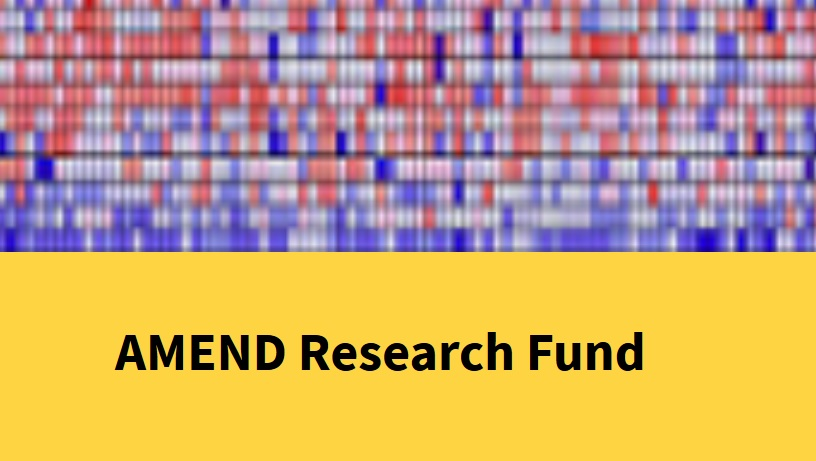 2020 Call for Applications to AMEND's Research Award Fund