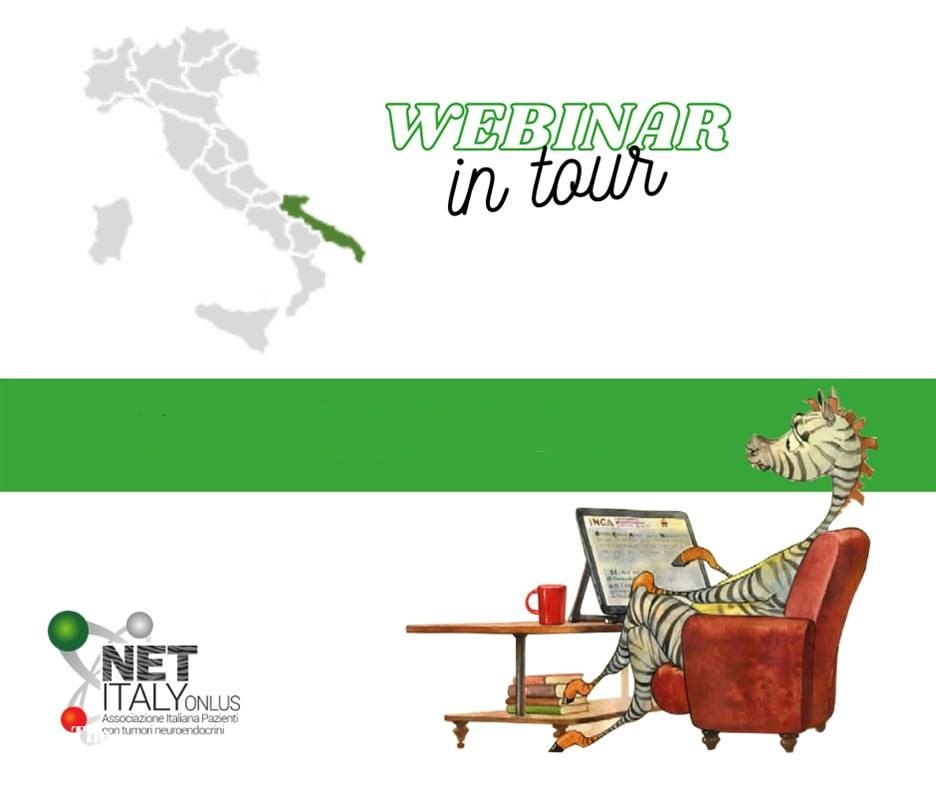 NET ITALY impegnata in un tour virtuale NET Italy Launched Webinar on Tour